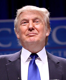 Donald Trump: The Politician You Don't Remember AskingFor